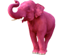 The Podgas Pink Elephant